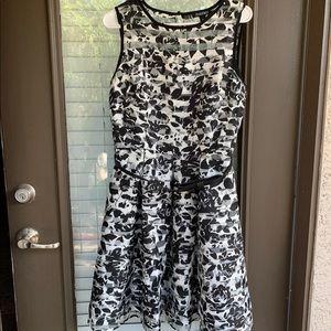 Roz & Ali black & white dress with belt